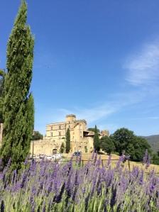 Provence3- Château de Lourmarin_CR Maude Carrier (2)