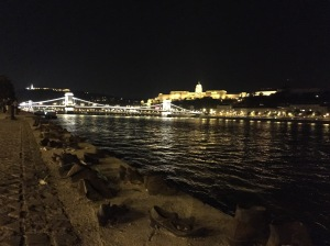 Budapest Danube at night